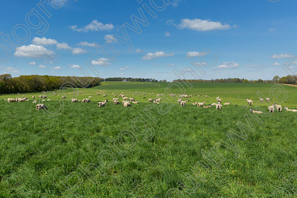 0000C0003A6389 