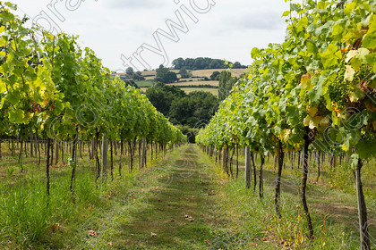 0000C0003A6494 