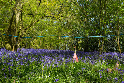 0000C0003A6358 