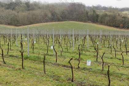 0000I0002A6593 